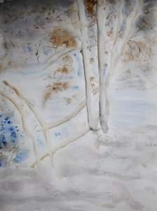 arbres-au-bord-du-lac-en-hiver-stage-st-leu-desserent