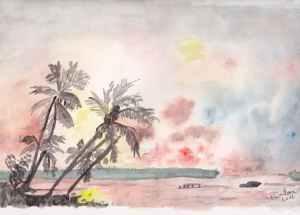 cocotiers au soleil couchant