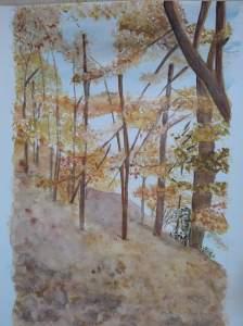 L'automne au bord du lac des settons_o
