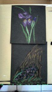 étude de fleurs au pastel à l'huile