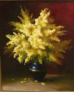 toutounov mimosa62695082