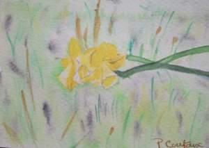 carte fleur 4_o