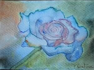 rose bleue aquarelle pascale coutoux