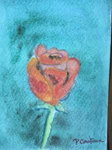 rose rouge aquarelle-carte pascale coutoux