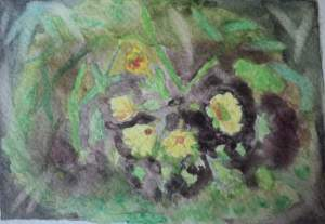 carte postale fleur de printemps coucou