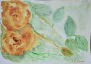 carte postale roses jaunes