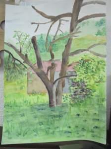 arbre et chalet