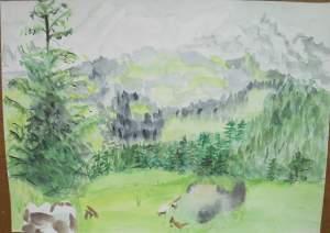 paysage de haute savoie (face au mont blanc)