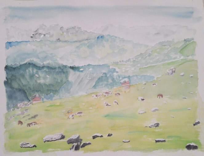 paysage de haute savoie vue sur le praz de lys_o