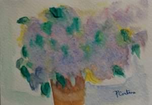 carte bouquet de lilas