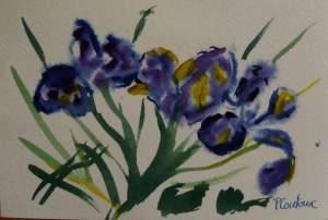 carte iris